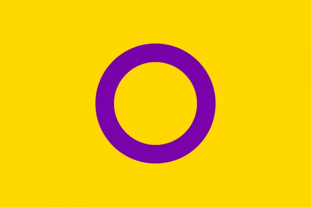 Flagge intergeschlechtlicher Menschen