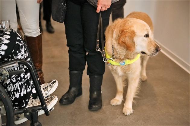 Eine Rollstuhlnutzerin und eine Person mit Assistenzhund im Gespräch auf einer Veranstaltung