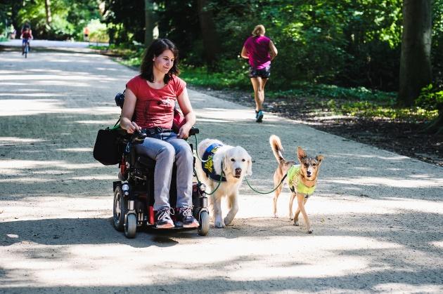 Frau mit Rollstuhl und zwei Assistenzhunden